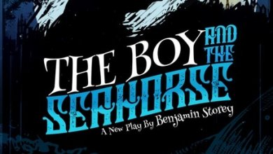 Photo of The Boy and The Seahorse – Gala Theatre Durham & Interabang Productions