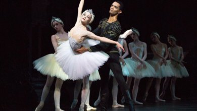 Photo of Swan Lake – Birmingham Hippodrome