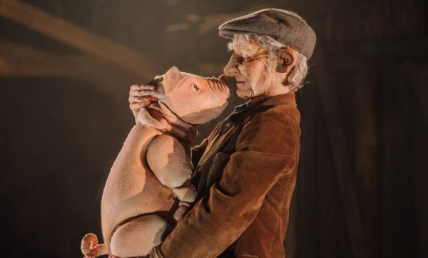 Photo of Babe, The Sheep Pig – The Lowry, Salford