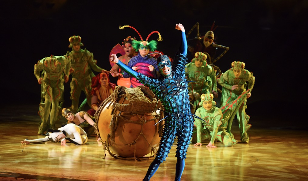 Photo of Cirque du Soleil: OVO – Echo Arena, Liverpool