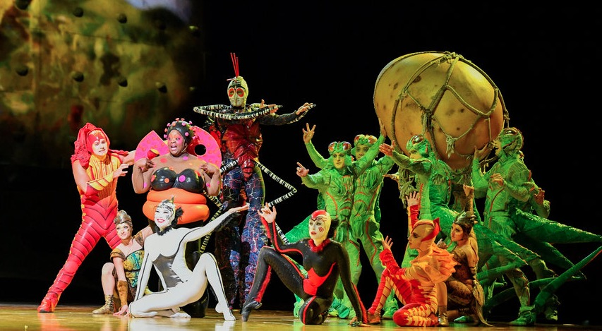 Photo of Cirque du Soleil: OVO – Royal Albert Hall, London