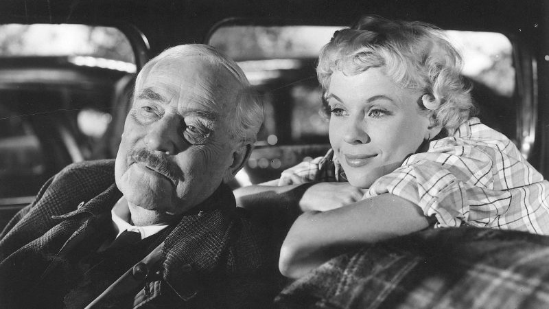 Photo of Leeds International Film Festival – Wild Strawberries