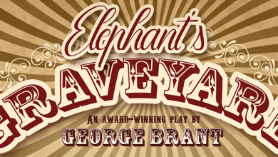 Photo of Elephant's Graveyard – The Production Exchange