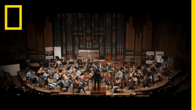Photo of An Unfinished Symphony – National Geographic, Nobel Peace Prize Shorts