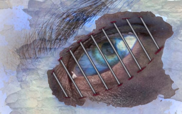graphic of an eye with bars in front
